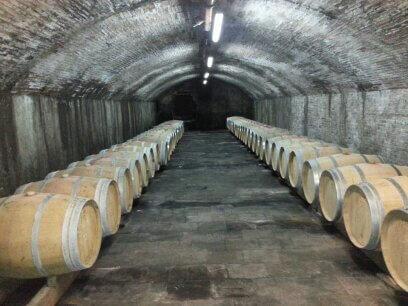 Weingut Domaine de Bosc Long
